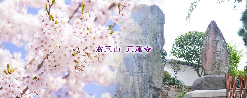 【高玉山 正蓮寺】 | 北九州市門司区にある浄土真宗本願寺派・正蓮寺です。納骨堂はもちろん、他のお寺にはない軍馬塚があります。